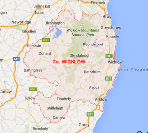 website design wicklow